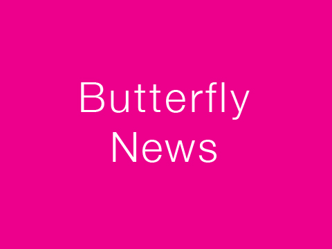 Butterfly Childcare Newsletter